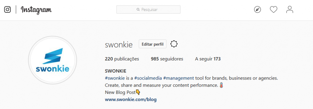 BIO do Instagram do Swonkie