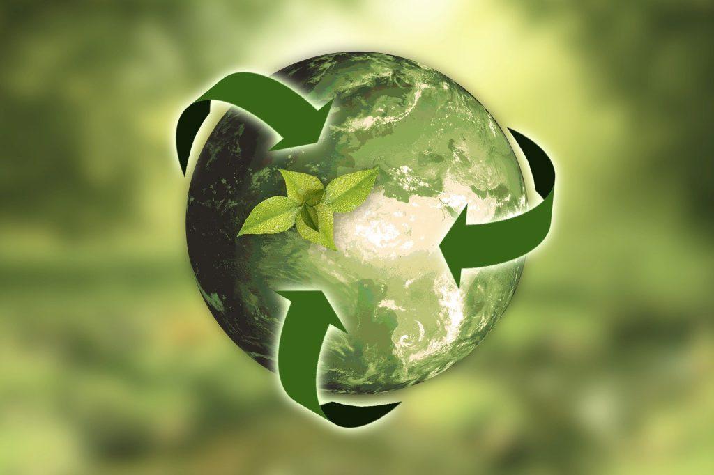 green marketing terra natureza sustentavel
